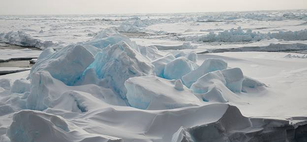 Why does the Arctic warm up faster than the rest of the world?