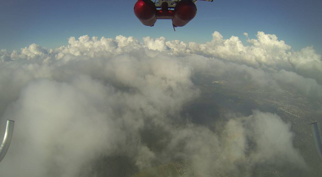 ACTOS's view of a cumulus field