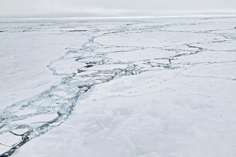 The Polarstern searches its way through the ice floes. The way through the ice to the south requires a lot of patience, because the ice channels mostly run in east-west direction and not in north-south direction. Photo: Stefanie Arndt, AWI