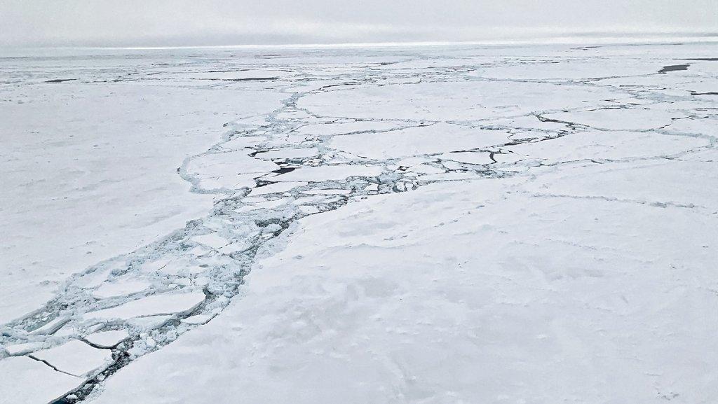 Die Polarstern sucht sich ihren Weg durch die Eisschollen. Der Weg durch das Eis nach Süden erfordert viel Geduld, denn die Eisrinnen verlaufen meist in Ost-West-Richtung und nicht in Nord-Süd-Richtung. Foto: Stefanie Arndt, AWI