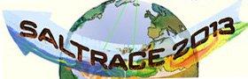 Saharan Aerosol Long-range Transport and Aerosol-Cloud-Interaction Experiment