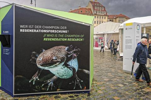 Wissenschaftsmeile auf dem Dresdner Neumarkt. Foto: Tilo Arnhold, TROPOS