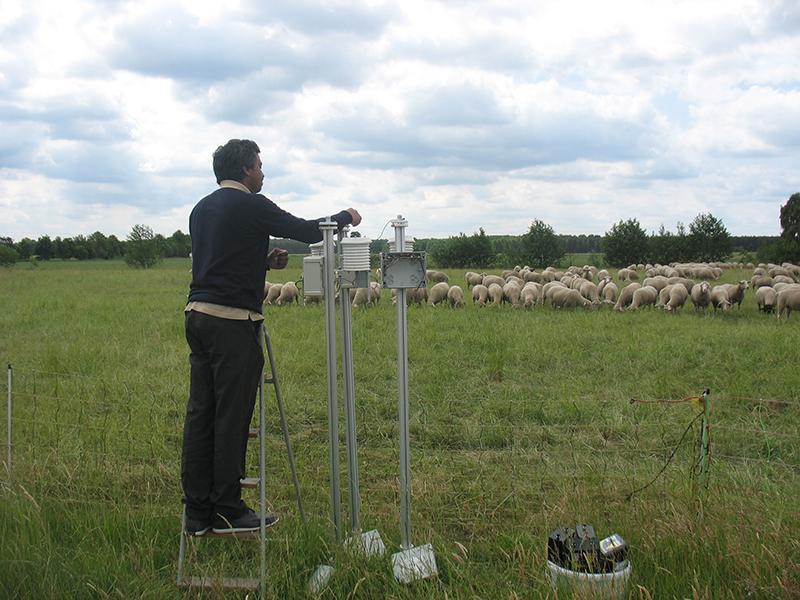 Dienstags werden alle Pyranometer mit neuen Batterien bestückt. Heute waren viele Schaulustige dabei. Foto: Janine Lückerath/ Universität Bayreuth