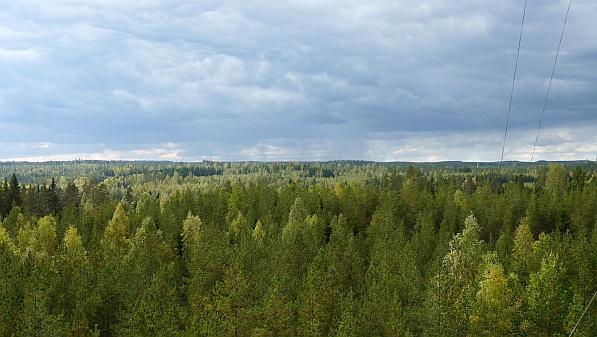 Messstation der Universität Helsinki im südfinnischen Hyytiäla . Foto: Juho Aalto