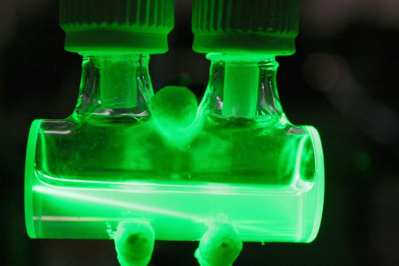 Im Labor des IRCELYON in Lyon wurde das Meerwasser künstlich beleuchtet und die dabei entstehenden Gase analysiert, um die photochemischen Prozesse an der Schnittstelle zwischen Meereswasser und Atmosphäre zu untersuchen. Foto: IRCELYON