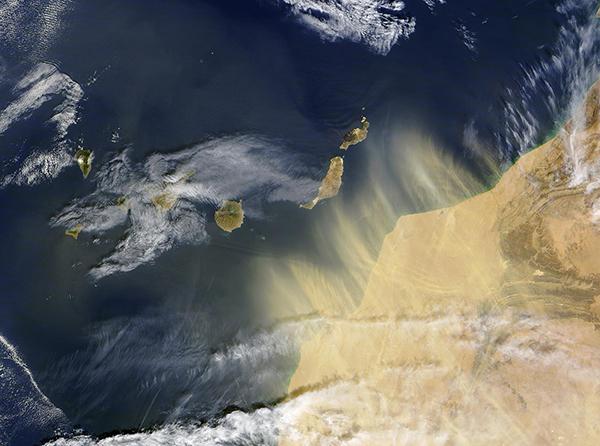 Wüstenstaub aus Nordafrika hinaus geweht auf den Atlantik in Richtung Kanarische Inseln. Beobachtet von MODIS auf NASA's Terra Satellit am 17. Februar 2004. Quelle: NASA